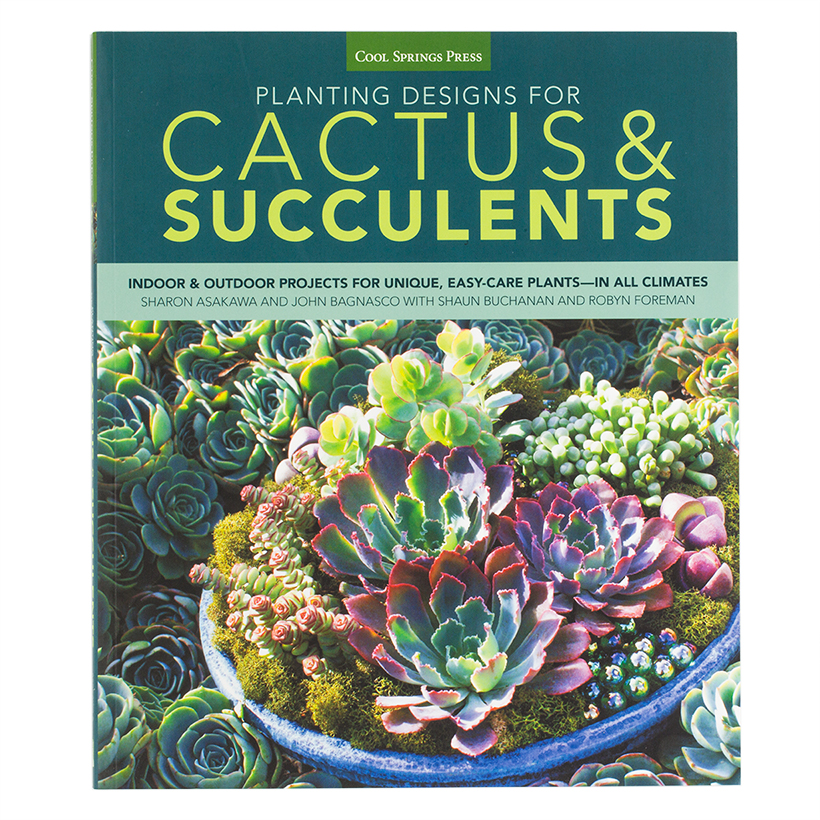 Planting Designs for Cactus & Succulents: Indoor and Outdoor Projects for Unique, Easy-Care Plants in All Climates