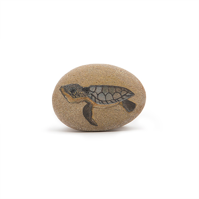 Turtle Painted Stone